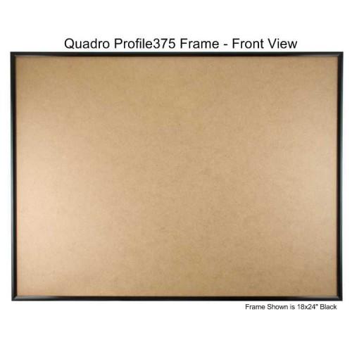 20x30 Picture Frames - Profile375 - GLASS-Box of 6 / PLASTIC-Box of 8