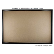 20x30 Picture Frames - Profile675 - Box of 2