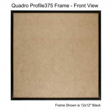 10x10 Picture Frames - Profile375 - Box of 6